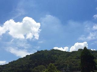 猪子山.jpg